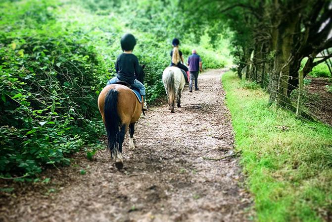Weeford Stables Equine Adventures Lichfield